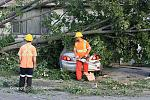 Name: 110822-goderich_damage_0036.jpg    