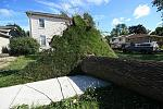 Name: 110822-goderich_damage_0058.jpg    